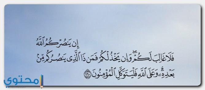 آيات قرآنية عن المظلوم