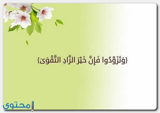ايات قرآنية عن تقوى القلب