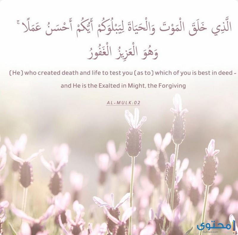 آيات قرآنية عن إتقان العمل