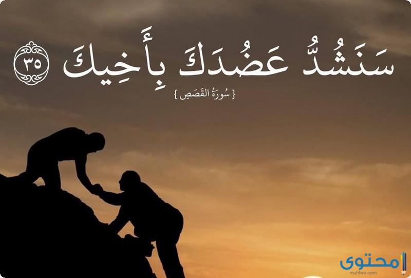 آيات قرآنية عن التعاون