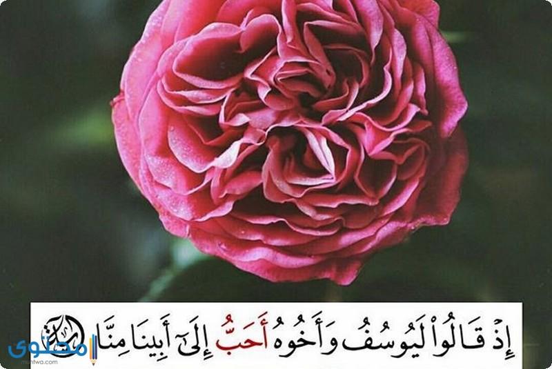 آيات قرآنية عن الحسد