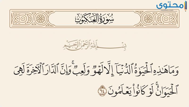 آيات قرآنية عن الحياة