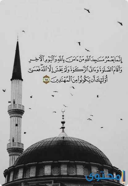 آيات قرآنية عن الصلاة