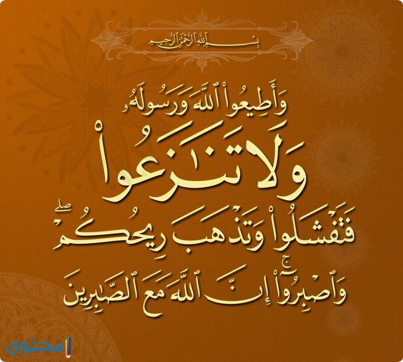 آيات قرآنية عن العمل الجماعي