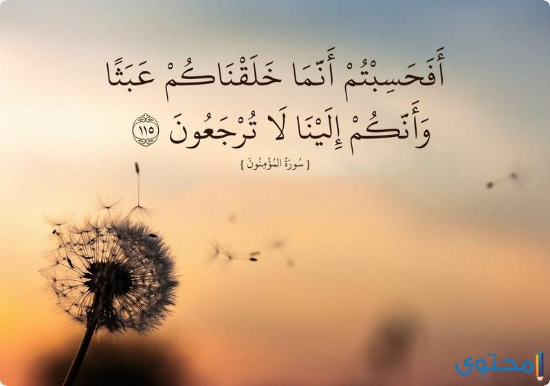 آيات قرآنية عن المسؤولية