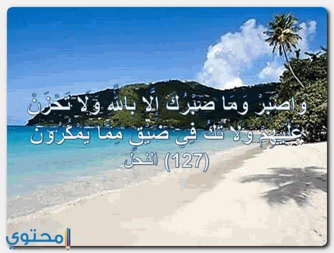 آيات قرآنية مؤثرة قصيرة