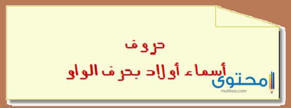 أسماء أولاد بحرف الواو