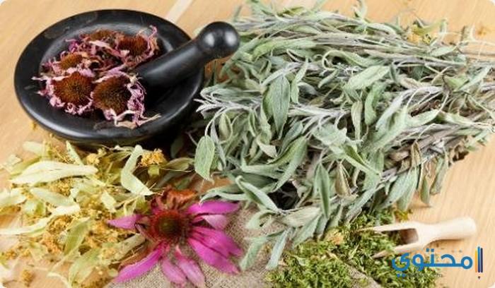 أسماء الأعشاب الطبية