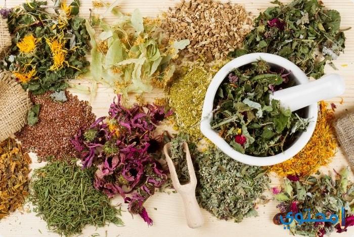 أسماء الأعشاب الطبية وفوائدها