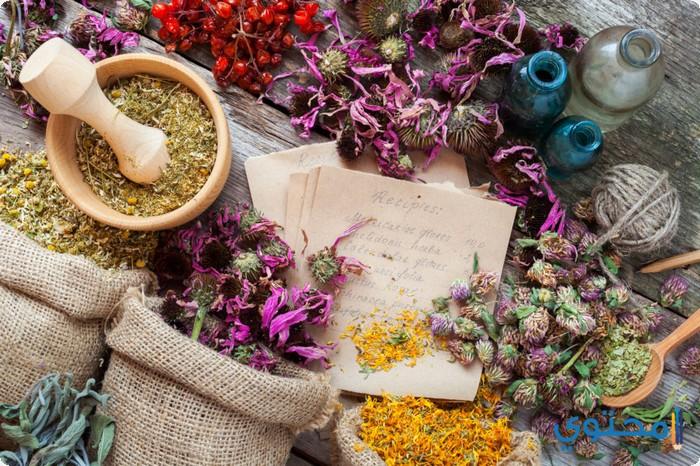 الأعشاب الطبية فى المغرب