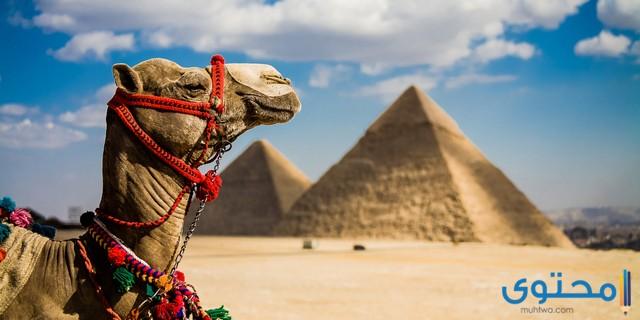 أفضل السياحه في مصر