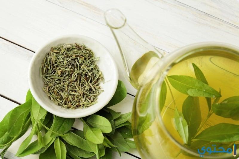 الفئات الممنوعة من تناول الشاي الأخضر