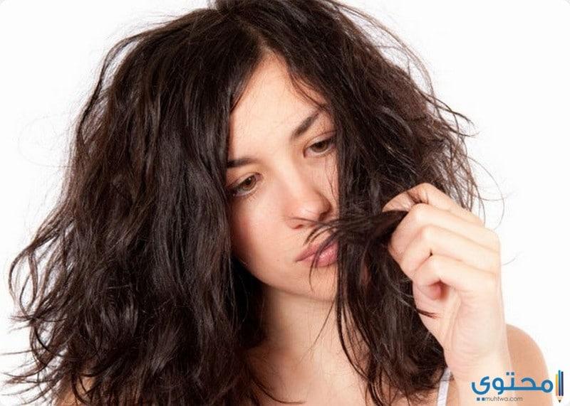 مخاطر فرد الشعر بالبروتين