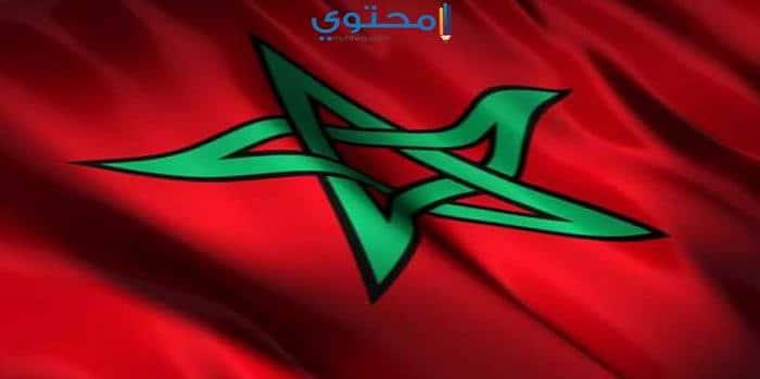 أغلفة علم المغرب حديثة