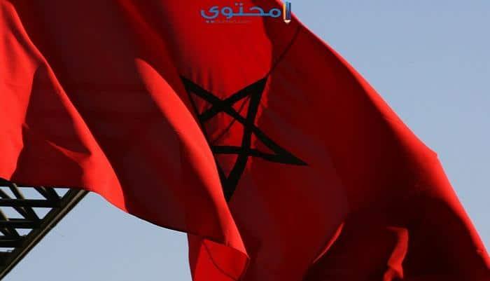 أروع تصميمات علم المغرب للفيس بوك