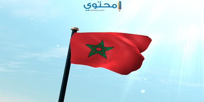 أحدث أغلفة علم المغرب