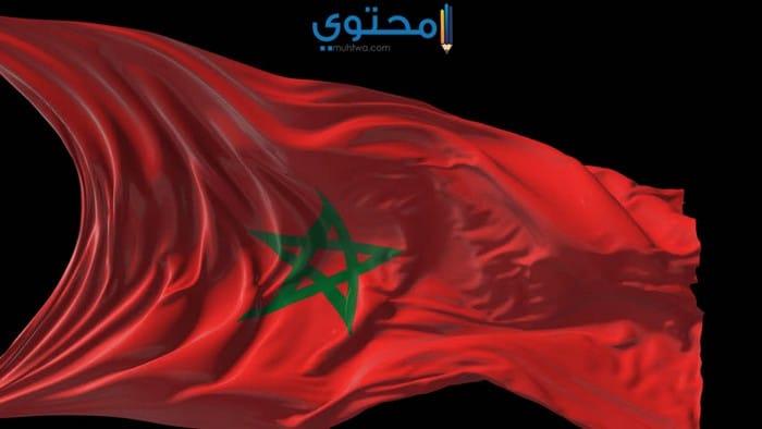 أغلفة علم المغرب