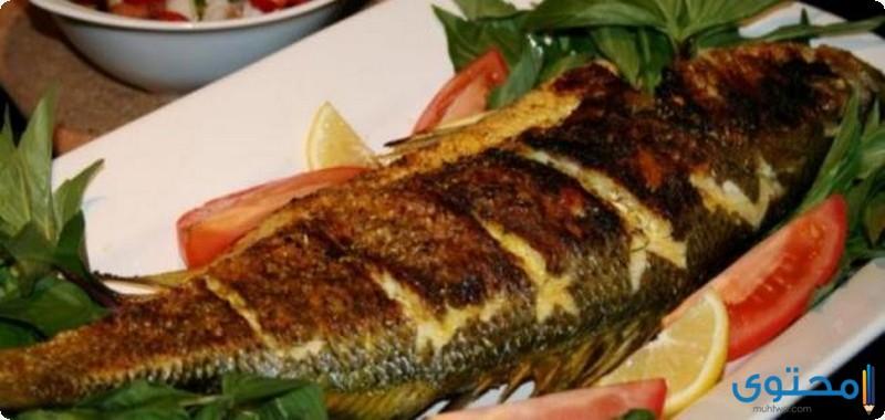 صينية سمك الهامور