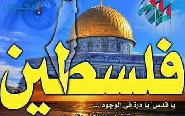 أجمل صور معبرة عن فلسطين