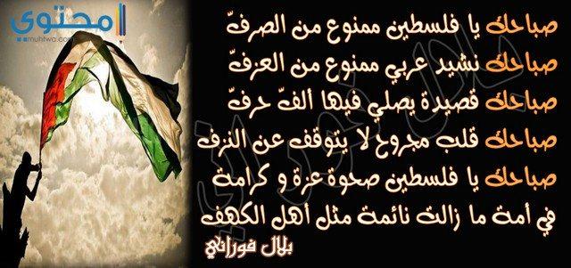 كلمات عن فلسطين الصمود
