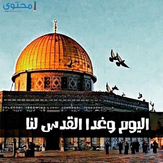 صور ورمزيات عن فلسطين