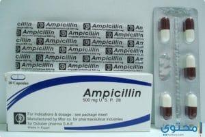 أمبيسلين Ampicillin كبسولات مضاد حيوي