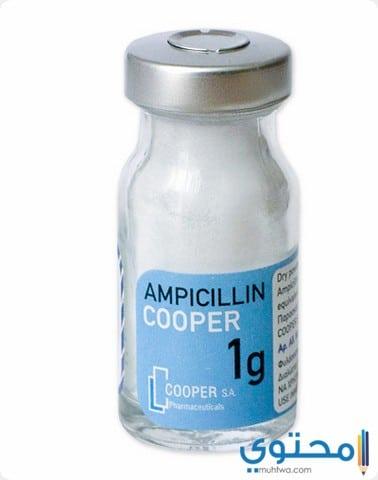 جرعة كبسولات أمبيسلين