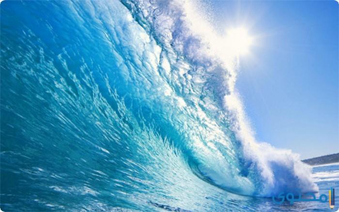 أنواع البحار والمحيطات