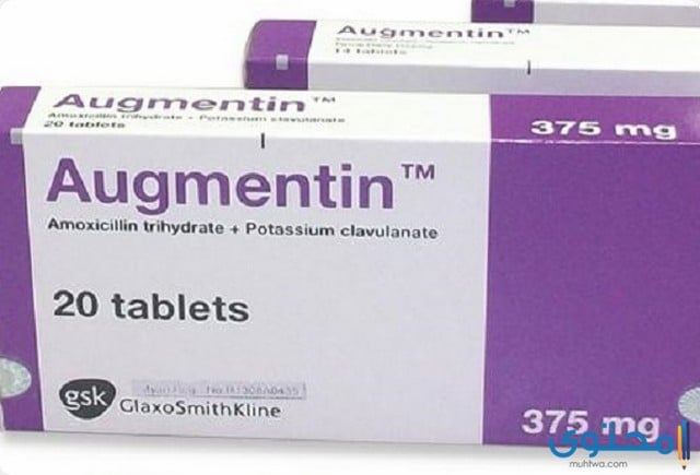 نشرة دواء اوجمنتين Augmentin مضاد حيوي موقع محتوى