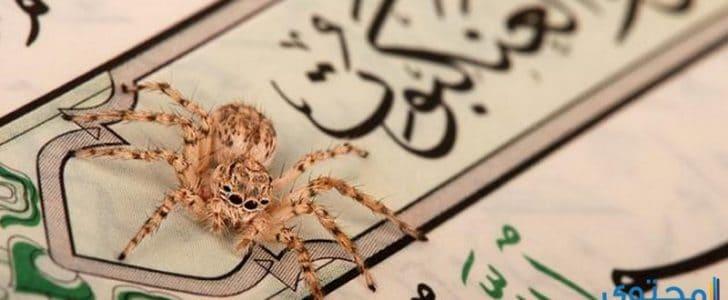 معجزة القرآن الكريم في سورة العنكبوت