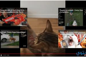 كيفية إخفاء مقترحات الفيديو في اليوتيوب