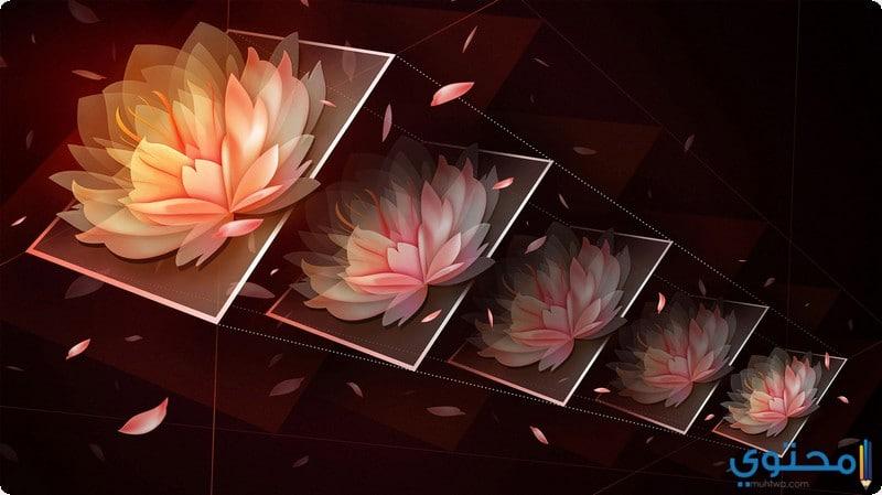 تحجيم الصور باستخدام تطبيق Photos