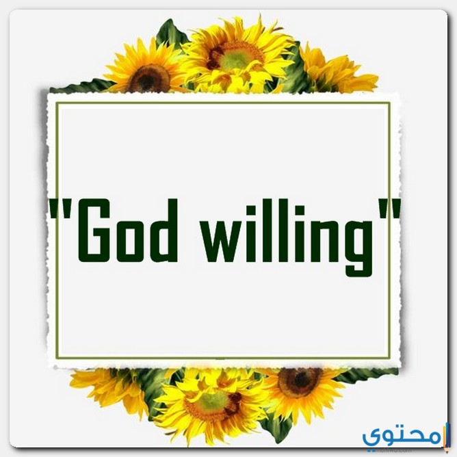 إن شاء الله وإنشاء الله