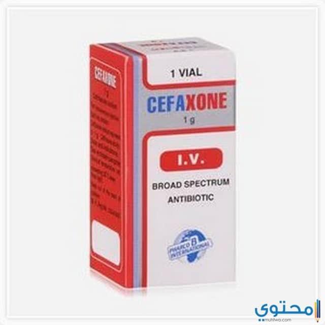 دواعي الاستعمال لدواء سيفاكسون