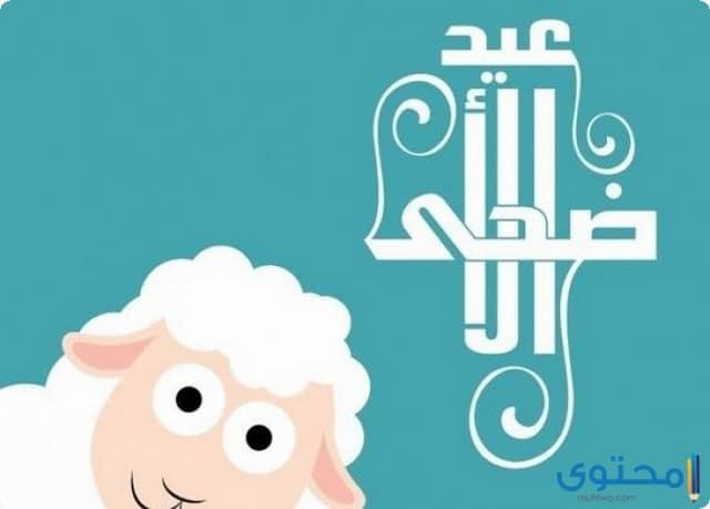 طقوس عيد الأضحى