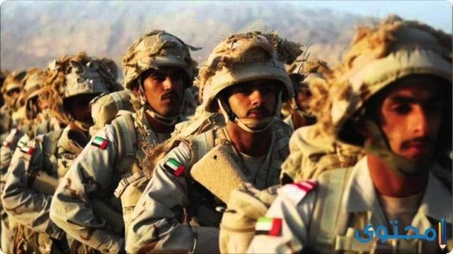 فروع الجيش المصري