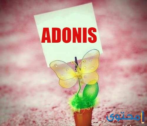 معنى اسم أدونيس