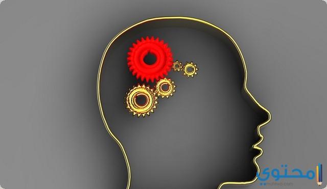 انواع ادوية تقوية الذاكرة