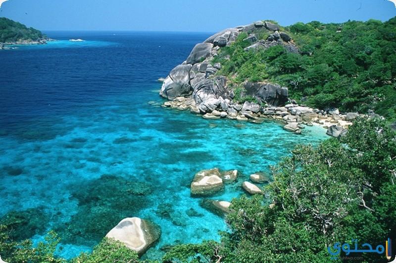 جزيرة أدو المرجانية