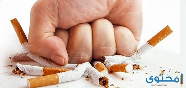 اذاعة مدرسية عن التدخين