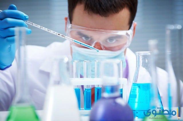 اسعار التحاليل في معمل المختبر - موقع محتوى