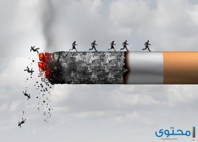 أضرار السجائر على الصحة