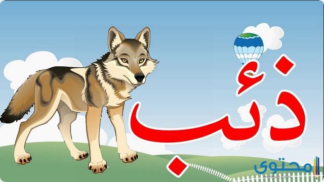 اسم حيوان بحرف الذال ذ موقع محتوى