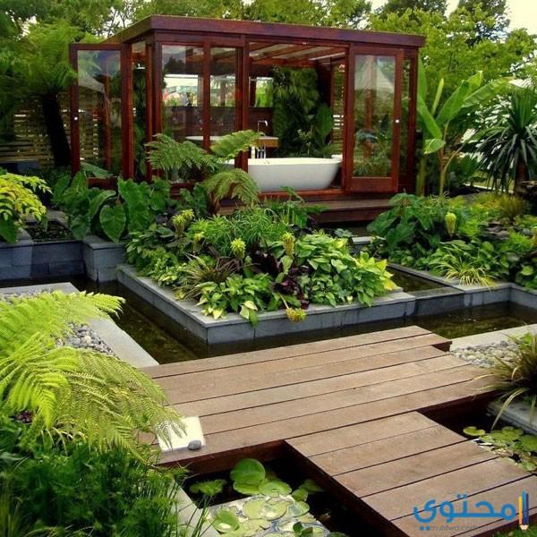 اشكال حدائق منزلية واسعة
