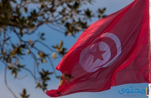 الأمثال التونسية ومعناها