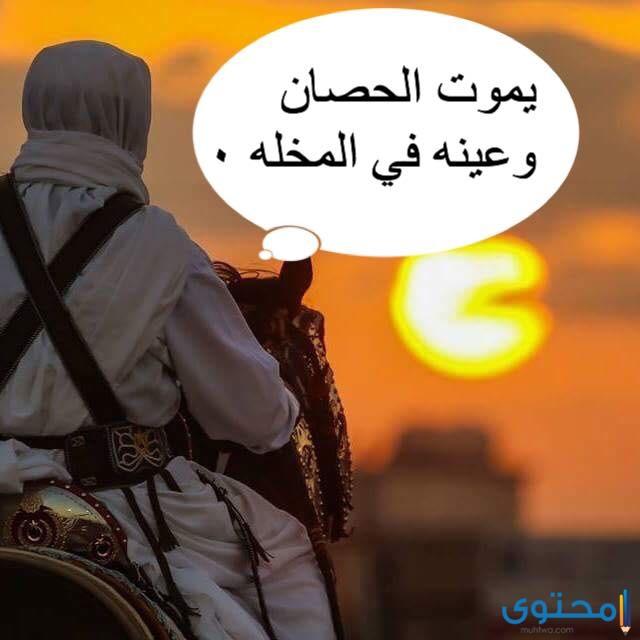 أشهر الأمثال التونسية