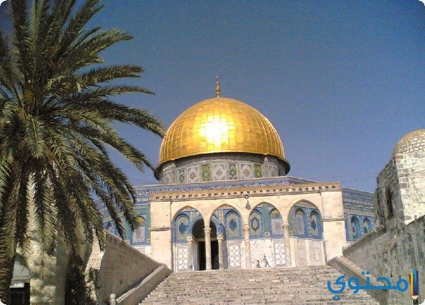 العديد من العرب غنوا عبر الأقمار الاصطناعية فهل تكون اصالة قائدة أول ثورة  فنية عربية من قلب القدس؟