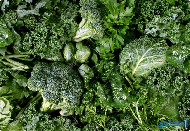 اغذية هامة لطرد السموم من الجسم - موقع محتوى