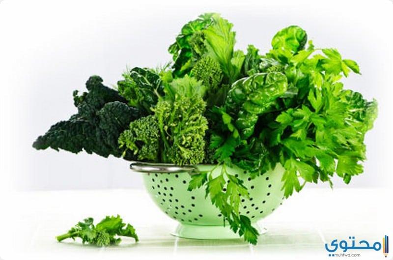 أغذية تحافظ على صحة الجهاز العصبي للجسم - موقع محتوى