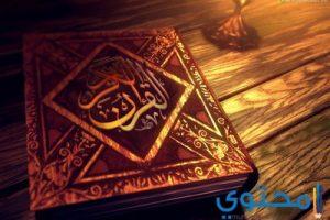 الأبراج في الأسلام (حكم قراءة الأبراج)